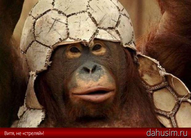 Как Виктор Понедельник «убил» обезьянку